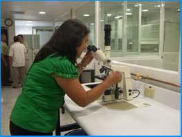 Un nuevo laboratorio para la investigación en biocombustibles, bioprocesos y  biorrefinerías