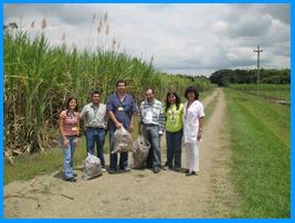 Un proyecto que le apunta a la generación de bioetanol a partir de residuos de la caña