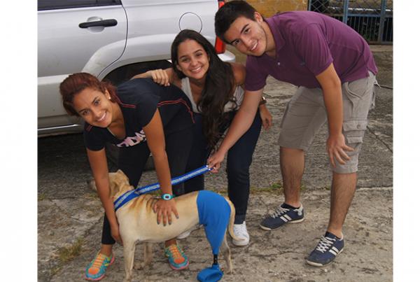 Ingenieros Autónomos aportan a la salud de las mascotas