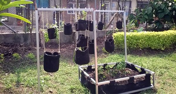 Proyecto Jardín Vertical para Fundautónoma