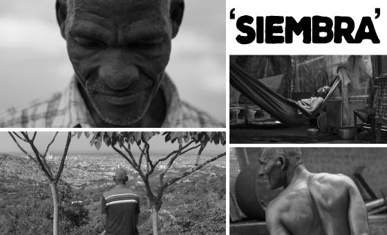 'Siembra' de cine en las universidades