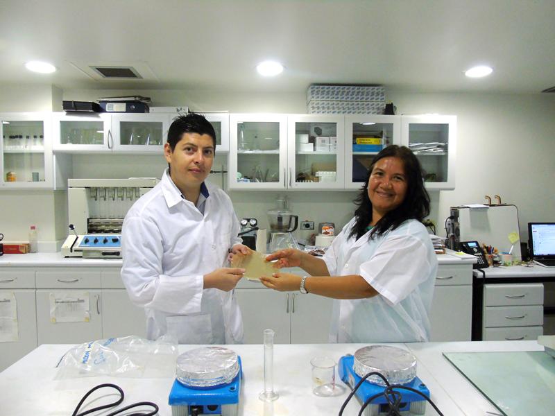 Investigadores caleños ganaron InnovActiva Reddi con bioplástico de banano y frutas